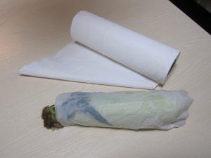 Maiskolben im nassen Küchenpapier
